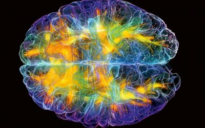 Chiropractic DOES Change Brain Function